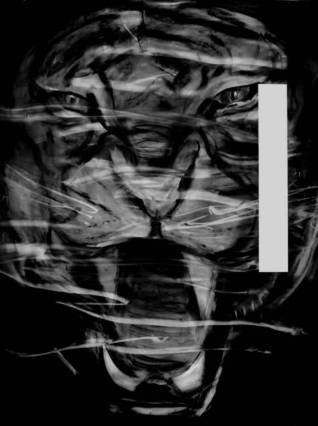 Kohlezeichnung_Raubkatze_150x200_2007